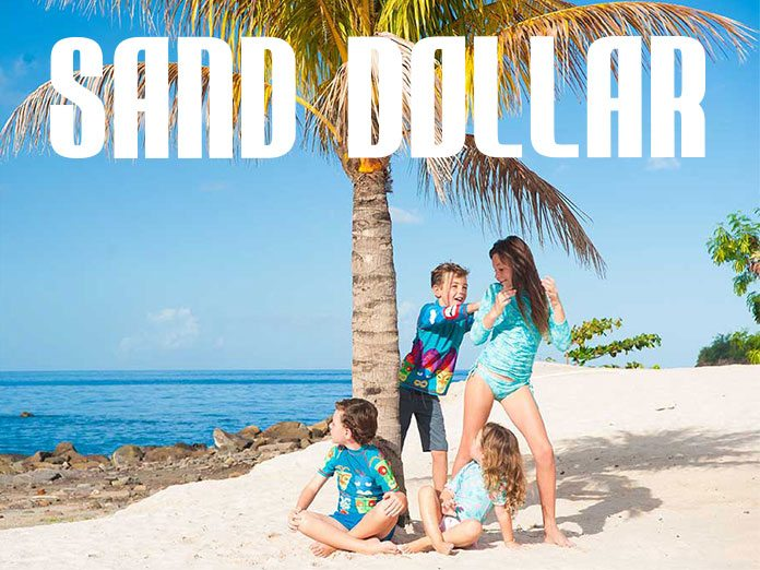 Sand Dollar Swim
